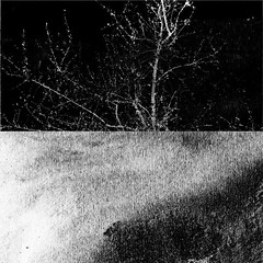 _2008.03.08 - 023-5-08-R. Zamora. (David Velasco.) Tags: abstracto cuadrado blanconegro geometría negro 2008