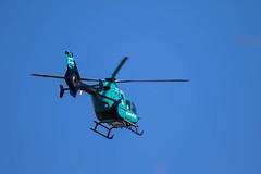 7K8A6782 (rpealit) Tags: scenery wildlife nature east hatchery alumni field hackettstown helicopter