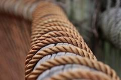 IMG_5949 (aalonsofotografia) Tags: cuerda fotografia desenfoque canon dzoom