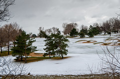 12/52 - Springtime (In Colorado) (laureanophoto) Tags: snow snowstorm ice cold 52 sky clouds rain 2017 golf course storm