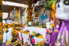 Oaxaca Day of the Dead orange flower shine-3