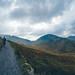 Trail+Descent+Run