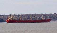 Federal Welland - IMO 9205926 (Jacques Trempe 2,670K hits - Merci-Thanks) Tags: caprouge quebec canada ship navire fleuve river stlaurent stlawrence bulker vraquier federal welland