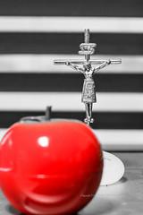 From apple to the crucifix (Daegeon Shin) Tags: fujifilm xpro2 takumar 50mm 50mmf14 supertakumar apple crucifix crucifijo mazana red rojo dof catolica catholic christianism fe faith spirituality espiritualidad stfrancis sanfrancisco franciscanism franciscanismo salvation 365 후지 타쿠마 수퍼타쿠마 사과 salvación redemption redención 십자가 수난 빨강 신앙 믿음 영성 그리스도교 cristo christ pecado sin 천주교 가톨릭 구원 속량 그리스도 죄 pecadooriginal originalsin 원죄 심도 mf manualfocus 수동 수동렌즈 mirrorless