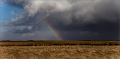 **THE CHOICE IS YOURS** (**THAT KID RICH**) Tags: richzoeller zoeller rich thatkidrich tkr rainbow clouds storm darkness fields grass iceland icelandic wires sky nature colors blue skies natgeo random explore canon weather beauty openfields