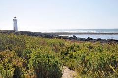DSC_7153 (Tim Beach) Tags: great ocean road melbourne victoria australia port fairy twelve 12 apostles princetown apollo bay beach sea water