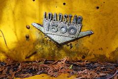 IMG_2663 (Irina Souiki) Tags: rusty crusty cars mcleansautowreckers milton ontario old oldcars