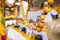 Oaxaca Day of the Dead orange flower shine-4