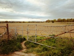 Beyond (Hilary Causer) Tags: leominster herefordshire walking farmland barbedwire farmgates field landscape rurallife