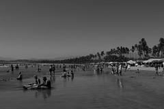 6107 (yolyes) Tags: canon canonistas canonmexicana playa beach ixtapa guerrero mexico visitmexico blancoynegro wb walkingmexico fotografos