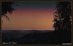Colori del tramonto con alberi - Aprile-2017 (agostinodascoli) Tags: tramonto sunset paesaggi nature texture colori cielo cianciana sicilia agostinodascoli landscape alberi nikonclubit