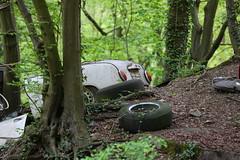 Old car (Mettwoosch) Tags: neandertal düsseldorf nrw germany deutschland oldtimer car woods tyre auto wald bäume reifen outdoor canon eos 5dm3 ef lens 5d3 travel trip collection sammlung