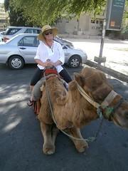 Jill with street camel (LarrynJill) Tags: travel vacation animals asia desert jill middleeast jordan camel camels aqaba 2014 camelriding jordanandcyprusvacation