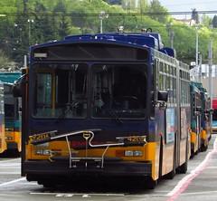 King County Metro Breda Trolley 4205 (zargoman) Tags: seattle county travel bus electric king metro trolley transportation transit converted breda articulated kiepe elektrik kingcountymetro highfloor