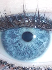 My Eye (JenniferAnn96) Tags: blue eye nature beautiful beauty closeup focus natural random definition depth unexpected nofilter sooc