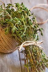Thyme (Speleolog) Tags: life wood old food plants green cooking nature kitchen season table leaf still healthy raw gardening eating object spice rustic gourmet evergreen twig bunch string medicine bouquet organic provence bundle botany aromatic tool herb thyme tranquil herbal preparation seasoning freshness preparing oldfashioned refreshment ingredient aromatherapy garni