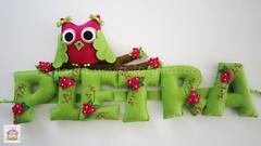 ♥♥♥ Pietra... (sweetfelt \ ideias em feltro) Tags: sign handmade feitoàmão felt owl coruja feltro handcraft chouette hibou feutrine faitmain letrinhas placadeporta namebanner plaquedeporte