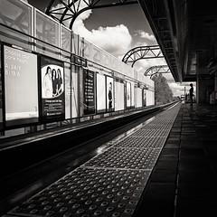 Royal Oak Station (. Jianwei .) Tags: street urban lines vancouver candid skytrain nex platfform kemily nex6