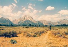 (eros turannos) Tags: mountain mountains film nature 35mm grand wilderness tetons