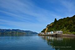 Boat Sheds, Duvauchelle, Banks Peninsula, New Zealand (flyingkiwigirl) Tags: bay boat doors peninsula coloured banks sheds cantebury duvauchelle