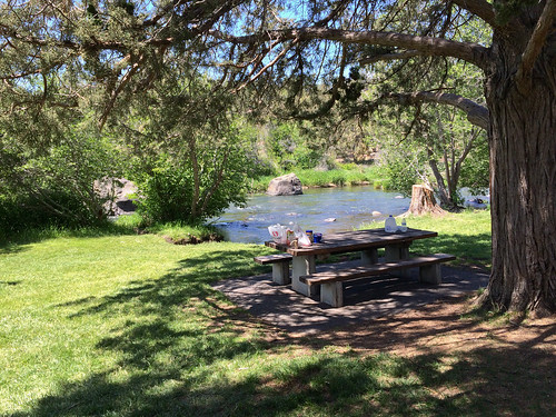 Picknick in der Oase