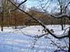 "16-01-2013 Blokje wandelen 7.5 Km (28) • <a style=""font-size:0.8em;"" href=""http://www.flickr.com/photos/118469228@N03/14560556465/"" target=""_blank"">View on Flickr</a>"
