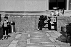 Steve Keene BPL Artist-in-Residence (slightheadache) Tags: brooklynpubliclibrary bpl stevekeene