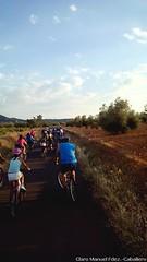 VII Marcha en bicicleta contra el cáncer en Herencia (56)