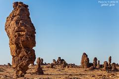 Al-`Ula Rocks (TARIQ-M) Tags: sunset mountains art silhouette rock sunrise landscape sand desert ripple dunes wave galaxy camels riyadh saudiarabia hdr milkyway canonef1635mmf28liiusm visipix canoneos5dmarkiii tariqm tariqalmutlaq 100606169424624226321poststariqm1