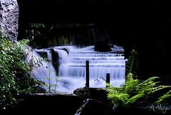 Cascadas Finca Galea (agmanjon) Tags: galicia lugo cascada finca galea