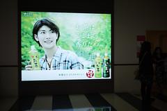 三浦春馬 画像39
