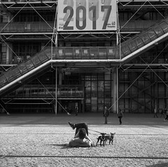 I'm Elliott Erwitt??? (ralcains) Tags: paris france francia streetphotography street calle fotografiadecalle blackwhite bw blancoynegro schwarzweis noiretblanc monochrome monocromo monochromatic analogue analogica química film película argentica argentique perro chien dog pompidou rolleiflex tessar zeiss mittelformat moyenformat formatomedio 6x6 kodak trix hc110 75mm