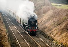 Tornado #2 (scilly puffin) Tags: 60163 tornado steamtrain train settle skipton appleby