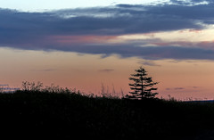 When the sun goes down (Danny VB) Tags: gaspesie quebec canada sunset perspective