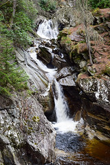 Falls of Bruar (Harry McGregor) Tags: bruar houseofbruar perthshire waterfall scenery water forest stream river nikon d3300 17 february 2017