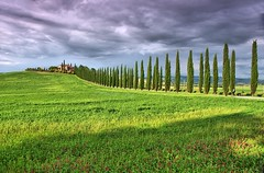 Tree-line (Jumpin'Jack) Tags: tree lined road driveway typical rural tuscan red brick firebrick house ona grassy knoll hill cypress trees cypresses meadow wild flowers ominous dark heavy clouds tuscany toscana italy