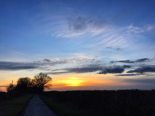 Country Lane Sunset