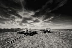 Three wagons (citrusjig) Tags: pentax k3 wisconsin blackandwhite manualfocus starvalley sigma1020mmf456 toned monochrome wagons posts