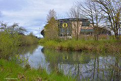 Autzen Stadium (JSB PHOTOGRAPHS) Tags: jsb125800013 water autzenstadium nikon d600 28300mm eugeneoregon recreation green goducks
