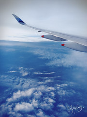 (Nicholas  H) Tags: travel tour blue 阿姆斯特丹 荷蘭 歐洲 river holland sky flight airport amsterdam netherlands window aircraft landscape europe