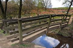 Padley gorge. (S.K.1963) Tags: elements padley gorge derbyshire peak district bridge stream water olympus omd em1 12 40mm pro