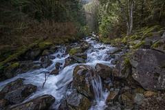 Change Creek (writing with light 2422 (Not Pro)) Tags: changecreek washingtonstate waterfall creek landscape trees richborder sonya77
