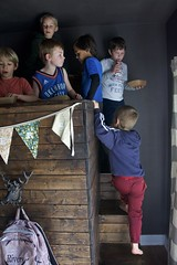 boys on the bunk (Pejasar) Tags: grandson boys bunkbed wood gatheringplace break donuts windowlight birthdayparty group children