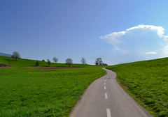 A path into the green (monicamalfatti) Tags: path green love landscape paesaggi photography passion valdinon trentino trekking italia italy italien cloud
