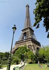 Eiffel Tower above the Champ de Mars
