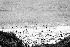Praia (Leandro Rinco) Tags: bw pretoebranco pb canon canon7d mono monochrome brazil brasil cabofrio tokina1116mm28 riodejaneiro rj praia beach pontaldoatalaia arraialdocabo
