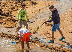 The Dam Builders (tramsteer) Tags: tramsteer hopecove devon beach bucket spade sand sea water southhams southwestengland southdevon dam
