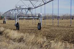 Rain Maker (Let Ideas Compete) Tags: pivot sprinkler pivotsprinkler irrigation farm farmland niwot colorado