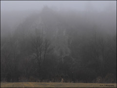 The Fog (John Neziol) Tags: kjphotography scarboroughbluffs scarboroughon bluffs canada fog nature sand grass trees outdoors ontario