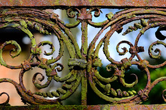 Rustic Details (georgeplakides) Tags: beningtonlordshipgardens snowdrops iron ornate gate rust